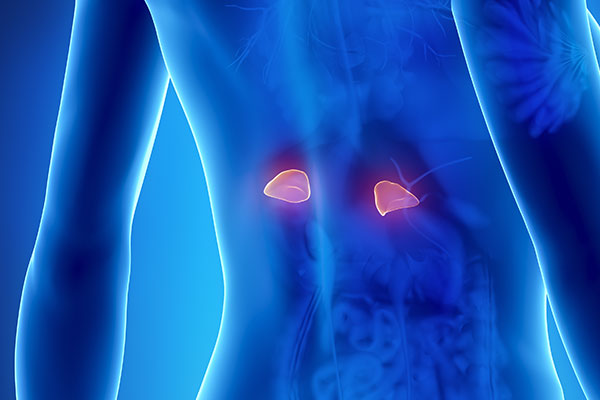 Adrenal Disorders Asheville